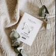 labradorit - platinované náušnice
